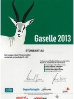 Gaselle-bedrift-2013-copy